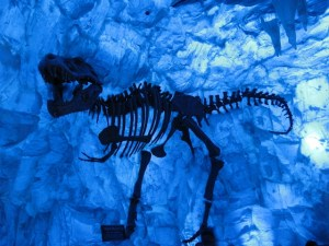 Ice Cave Disney World