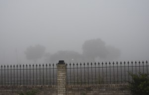 Fog to the north