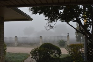 Somewhere in the fog, there is a house.