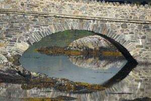 close up under the bridge (640x427)