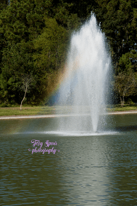 rainbow-fountain-900-052
