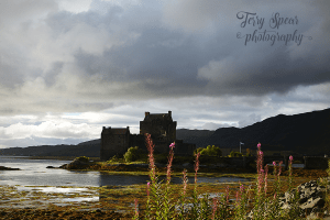 purple-flowers-eilean-donan-900-stormy-clouds-lake