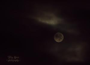 super-moon-900-002