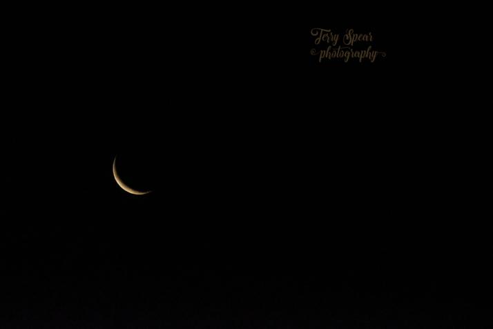 crescent-moon-900-8743