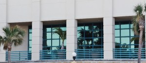 palm-trees-reflected-in-glass-800x349