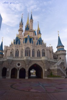 Cinderella Castle no people 900 Orlando Disney RWA 2017 1212