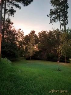 morning sunrise2 home