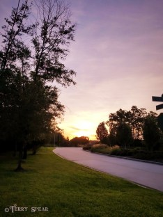 sunrise2 home