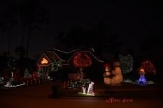 Neighbor's Christmas lights and sunrise 1000 006