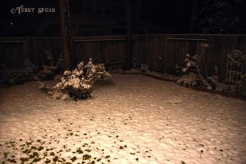 Snow in Spring1 900 009