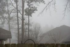 heavy fog 1000 011