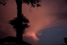 Pink powder puff clouds sunset 900 021