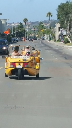 go-cart on street through San Diego 1000