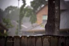 pouring rain 1000 001