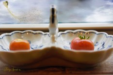 ripe tomatoes 1000 006