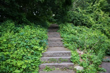 stairs into woods 1000 Minnesota 137