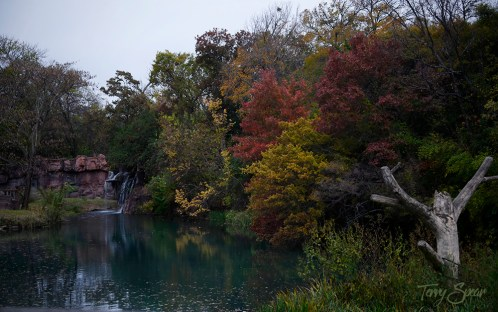fall colors pond1 1000