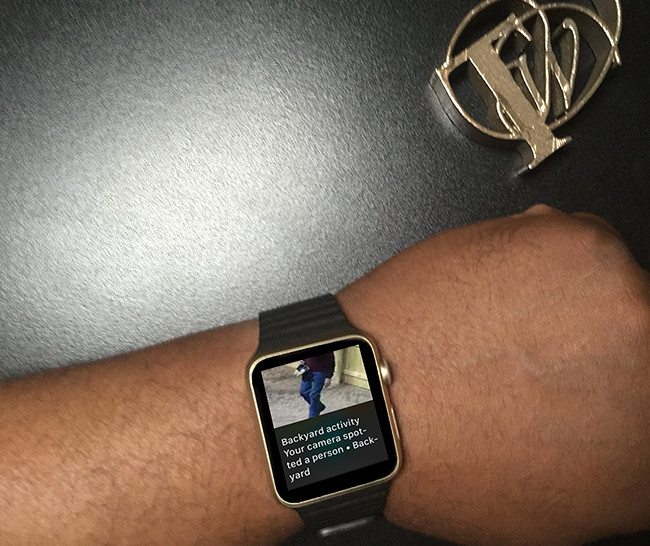 apple watch alert