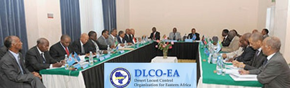 Opportunities at The Desert Locust Control Organisation for Eastern Africa(DLCO-EA)