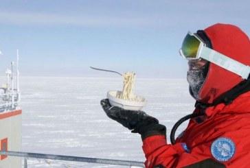 Antarktidë: si është të gatuash nën -80 gradë