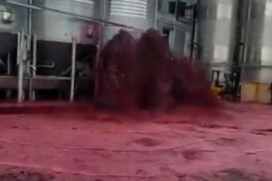 Reale e jo metaforë: kur vera derdhet lumë (video)