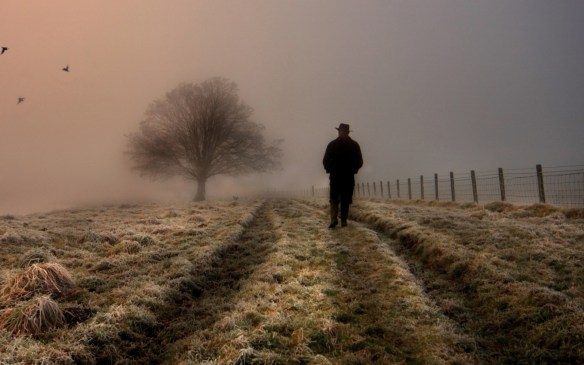 Lonely-Man-Walking-In-Field-1920x1200