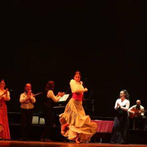 Ballet Flamenco Español di Madrid (2)