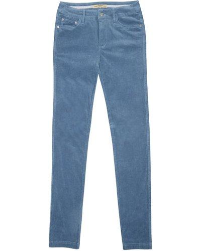 Dubarry Womens Honeysuckle Stretch Pincord Jeans Denim 18