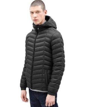 Timberland  Garfield Hooded Jacket  men's Jacket in Black
