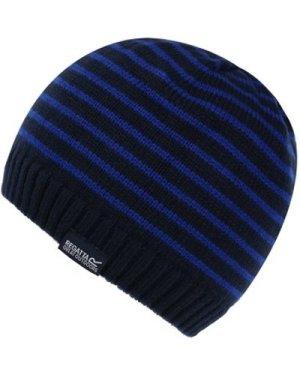 Regatta  Tarley Fleece Lined Knitted Hat Blue  boys's Children's beanie in Blue