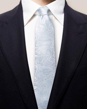 Blue lustrous paisley tie