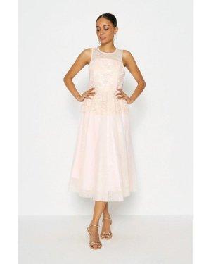 Coast Lace Bodice Tulle Skirt Dress -, Pink