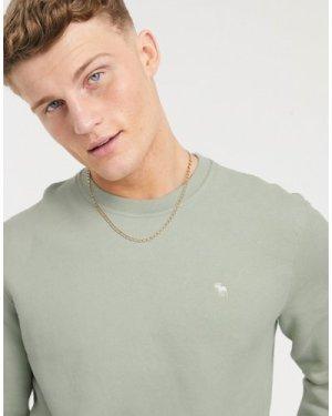 Abercrombie & Fitch icon logo sweatshirt in green