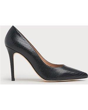 Fern Black Snake Print Leather Courts, Black