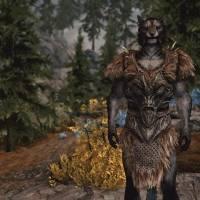The armor of Hircine