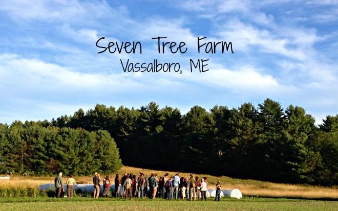 7 tree farm
