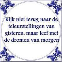 teleurstelling - tesschuurman.nl