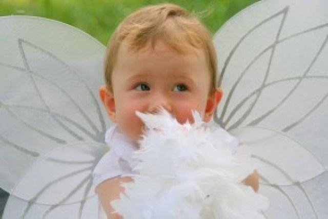 Tess Whitehurst-Baby Feng Shui