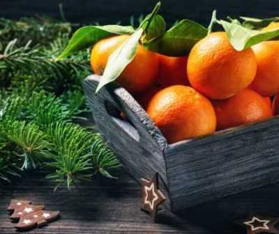 Aromatherapy and Herbs for Yule - Tangerine