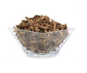 Herbs Protection Magick Elecampane