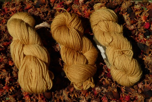 A picture showing 3 skeins of pomegranate naturally dyed yarn against a background of dried pomegranates