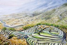 Les rizières dans les montagnes ( Vietnam )