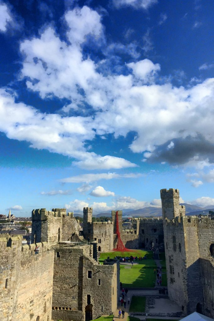 caernarfon-castle-poppies-in-wales