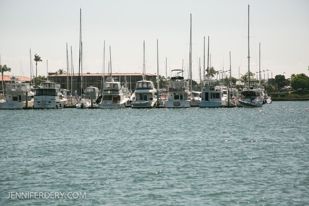 marriage-proposal-boat-photos-san-diego-9282