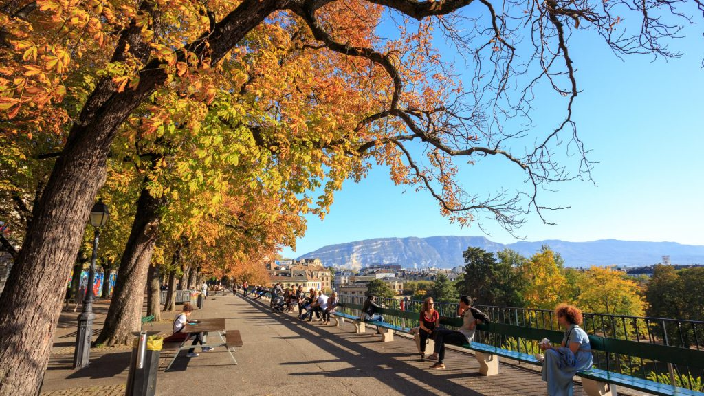The longest wooden bench in the world is in Geneva