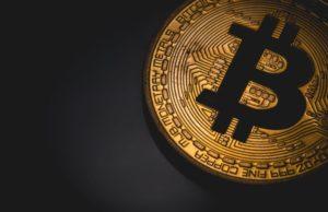 Investors Interested in Bitcoin are Women