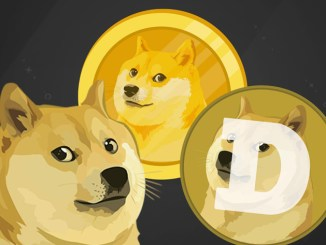 Elon Musk Says Dogecoin Is The Best Coin