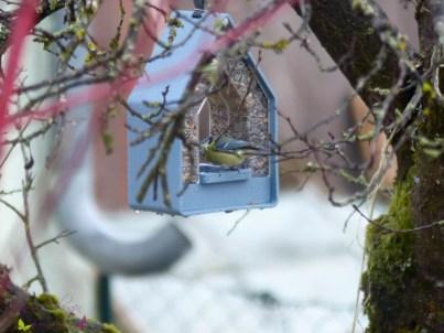 emsa Vogelhaus Fütterung