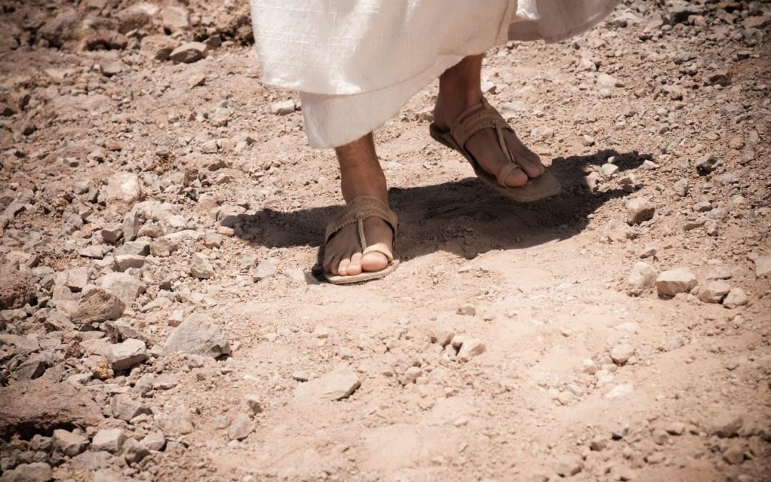Pasión por la vida de Jesús