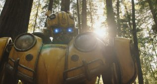 Bumblebee © Paramount Pictures.